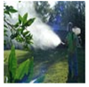 Picture of Fogging